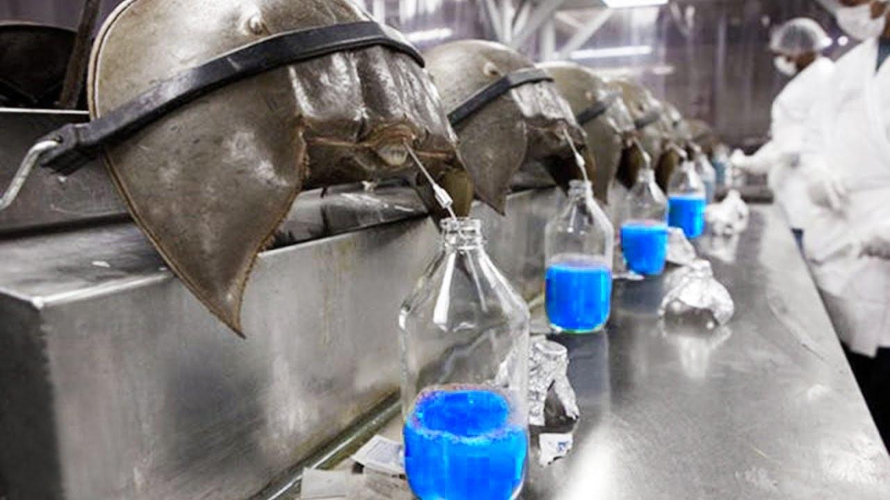世界で最も高価な液体12選